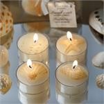 SEASHELL TEALIGHT 100PCS