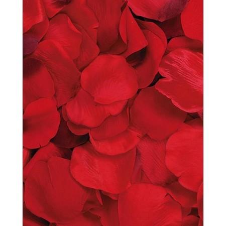 Mixed red silk flower petals 100pcsbag mightylinksfo